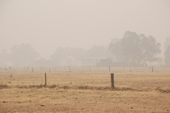 ashleigh-leech-someform-bushfires-huntly-australia-01