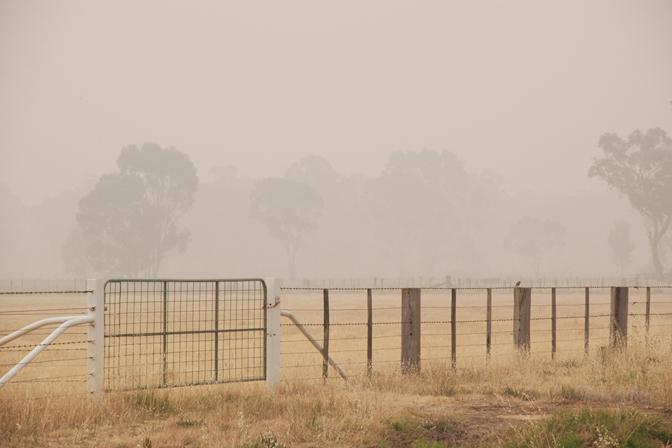 ashleigh-leech-someform-bushfires-huntly-australia-03