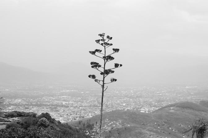 ashleigh-leech-someform-monte-alban-oaxaca-mexico-04