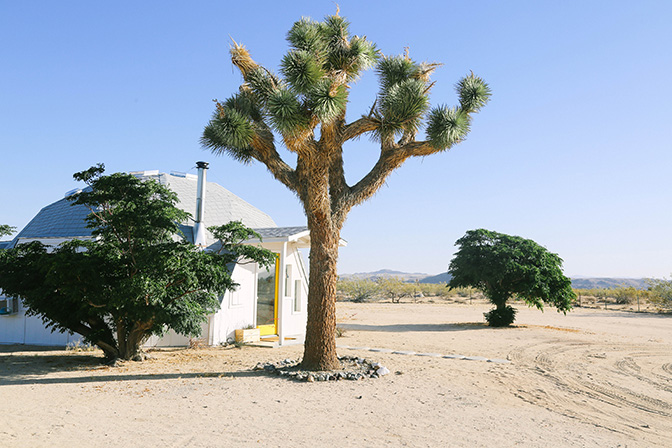 ashleigh-leech-someform-dome-in-the-desert-joshua-tree-16