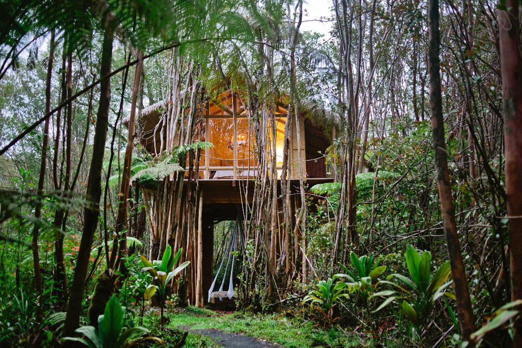 ashleigh-leech-someform-airbnb-hawaii-treehouse-01