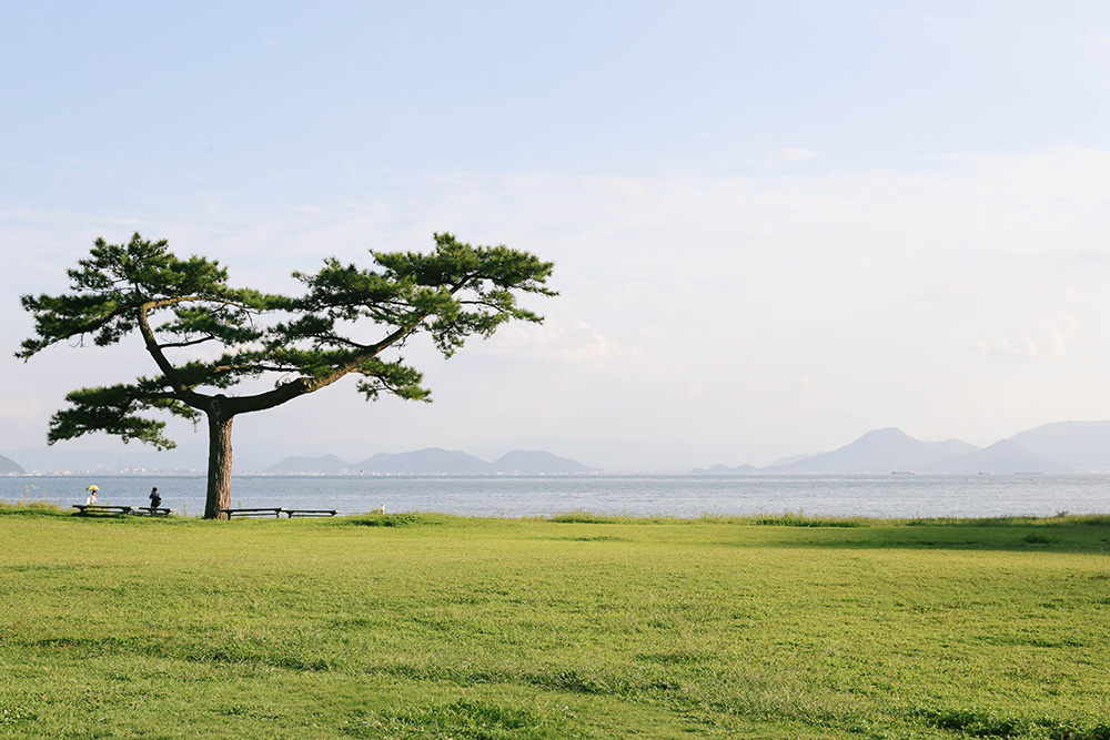 ashleigh-leech-someform-naoshima-teshima-art-islands-japan-19